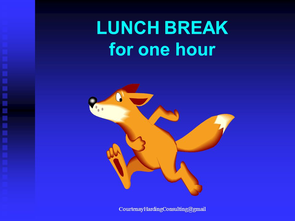 LUNCH BREAK for one hour CourtenayHardingConsulting@gmail