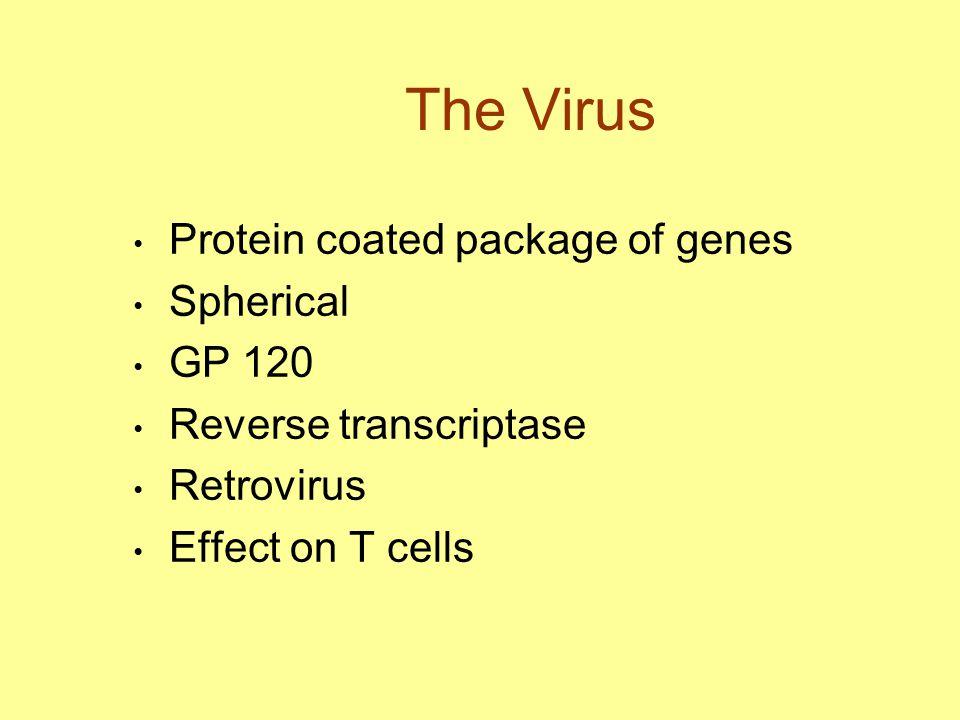 The Virus Protein coated package of genes Spherical GP 120 Reverse transcriptase Retrovirus Effect on T cells