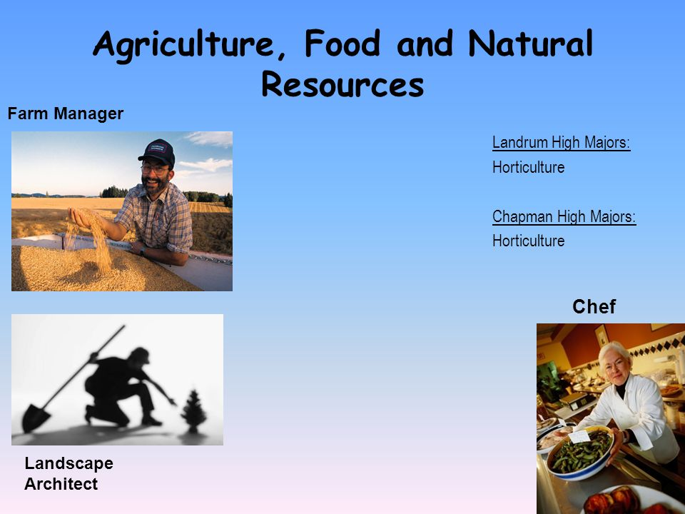 Agriculture, Food and Natural Resources Farm Manager Landrum High Majors: Horticulture Chapman High Majors: Horticulture Landscape Architect Chef