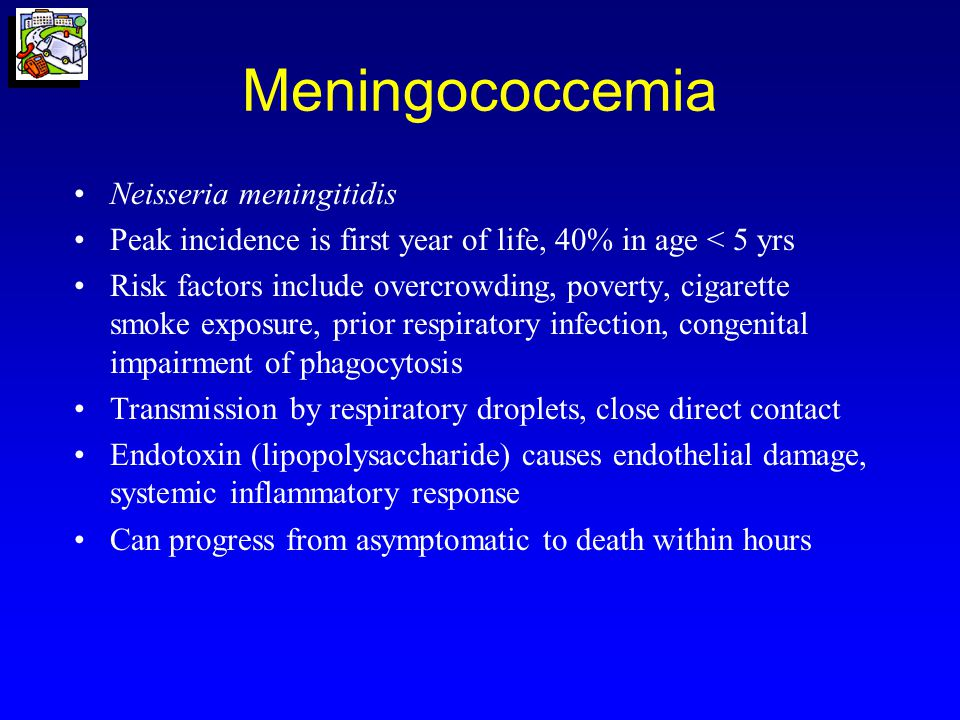 Meningococcemia, con't Signs and symptoms –Fever, headache, myalgias –Altered mental status, high fever or hypothermia, tachypnea, hypotension –Petechial rash progressing to purpura may begin as macules, maculopapules, or urticaria Case fatality rate > 40% Work-up –Culture blood, CSF, skin lesions –CSF antigen testing (latex agglutination)