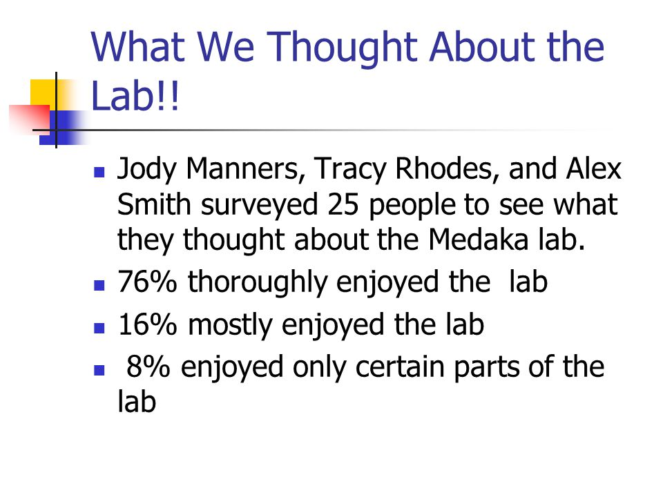 What We Thought About the Lab!.