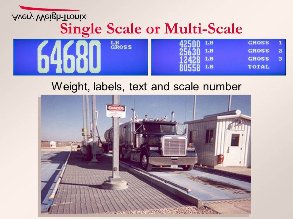 Single Scale or Multi-Scale Weight, labels, text and scale number