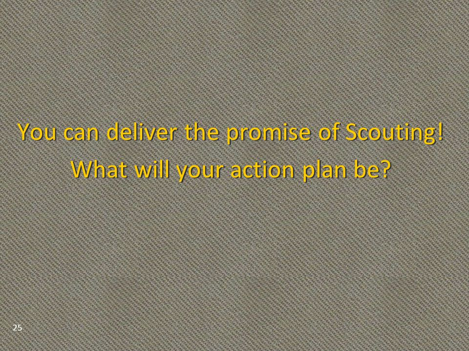 You can deliver the promise of Scouting. What will your action plan be.