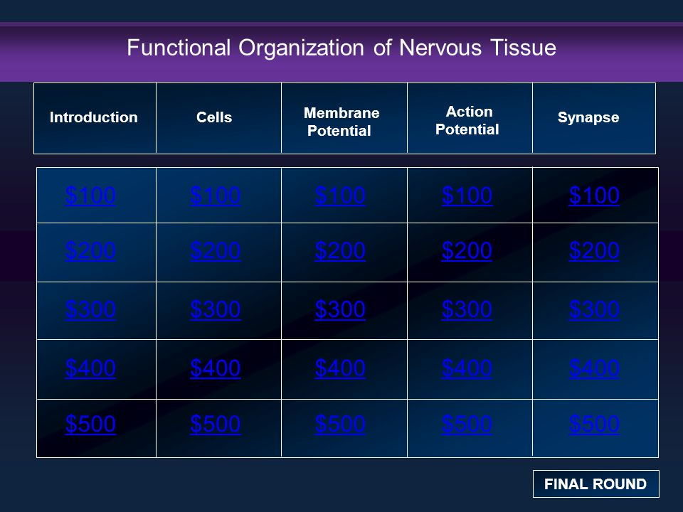 Introduction: $100 Question This is NOT a part of the peripheral nervous system: a.