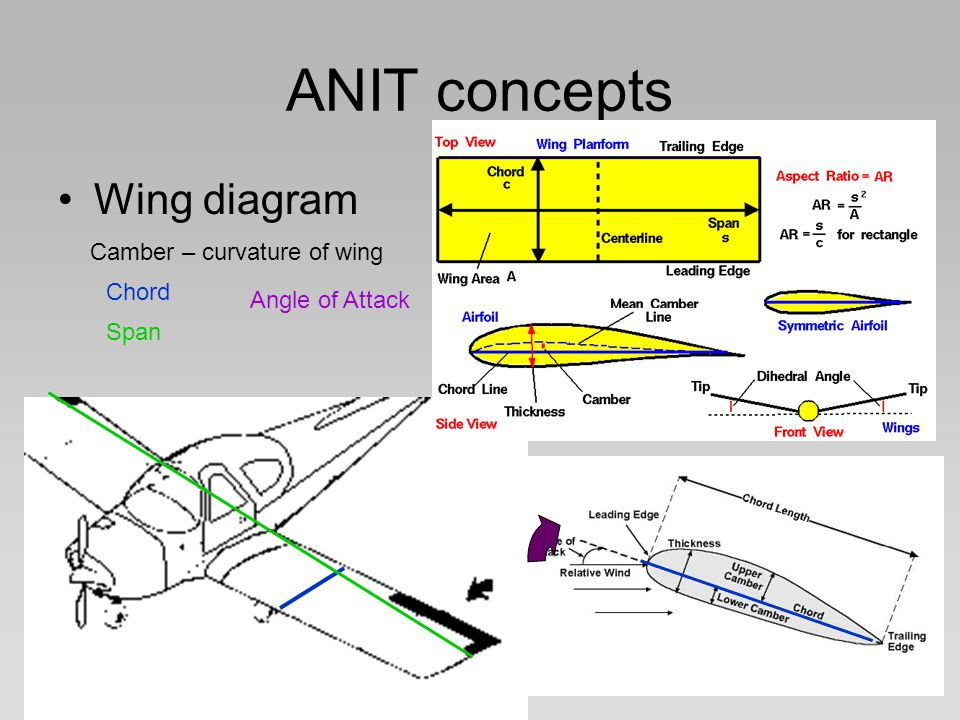 ANIT concepts Wing diagram Camber – curvature of wing Chord Span Angle of Attack