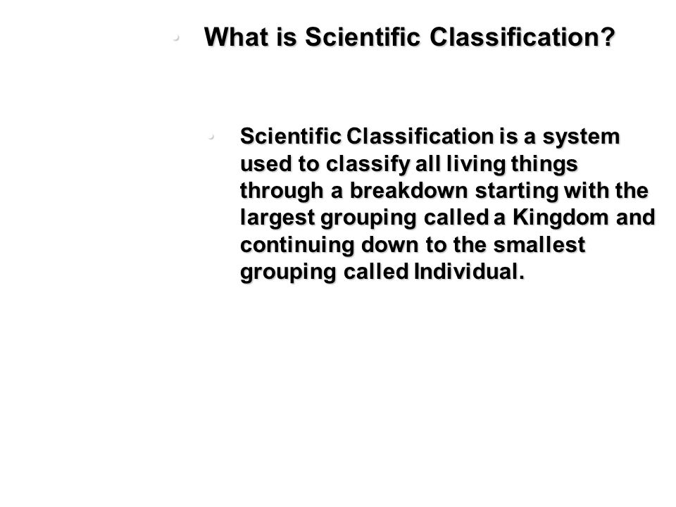 What is Scientific Classification?What is Scientific Classification.