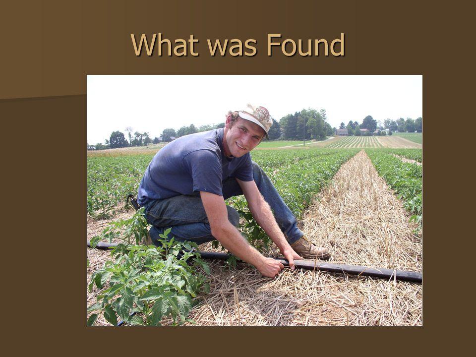 What was Found