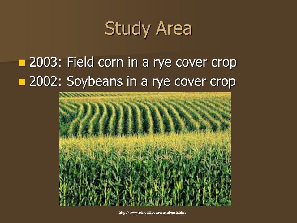 2003: Field corn in a rye cover crop 2003: Field corn in a rye cover crop 2002: Soybeans in a rye cover crop 2002: Soybeans in a rye cover crop http://www.sdnotill.com/membersh.htm