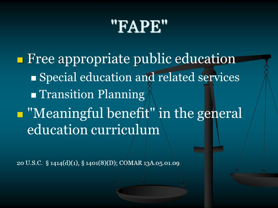 FAPE Fape Free appropriate public education Special education and related services Transition Planning Meaningful benefit in the general education curriculum 20 U.S.C.