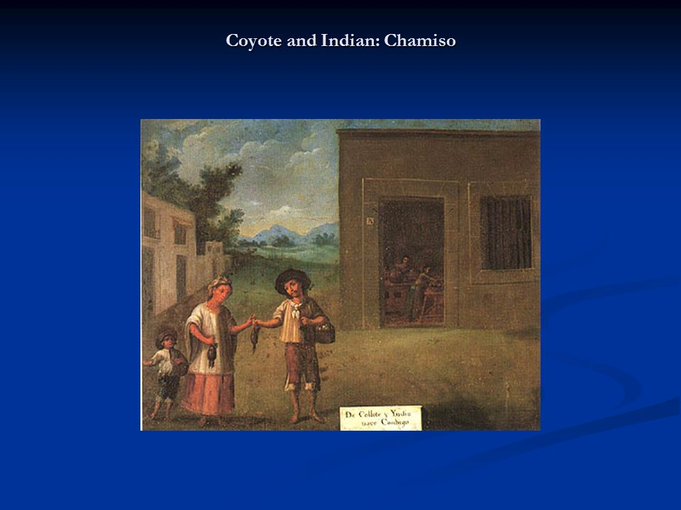 Coyote and Indian: Chamiso