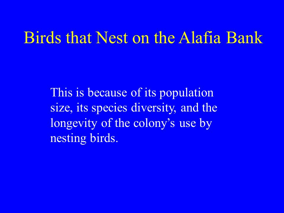 This is because of its population size, its species diversity, and the longevity of the colony's use by nesting birds.