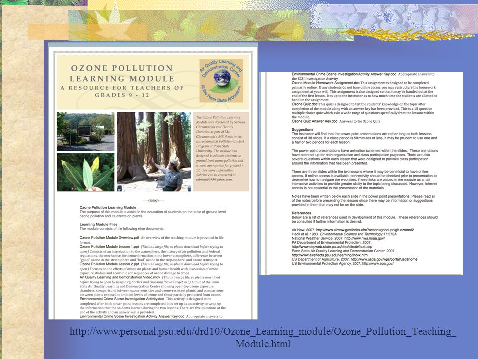 http://www.personal.psu.edu/drd10/Ozone_Learning_module/Ozone_Pollution_Teaching_ Module.html