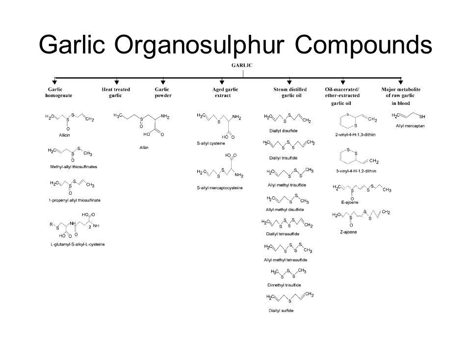 Garlic Organosulphur Compounds