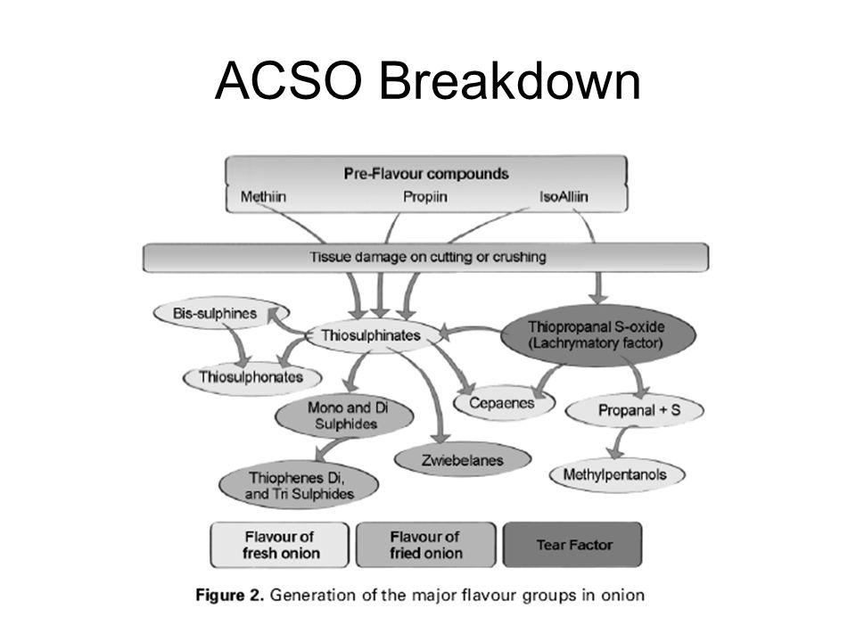 ACSO Breakdown
