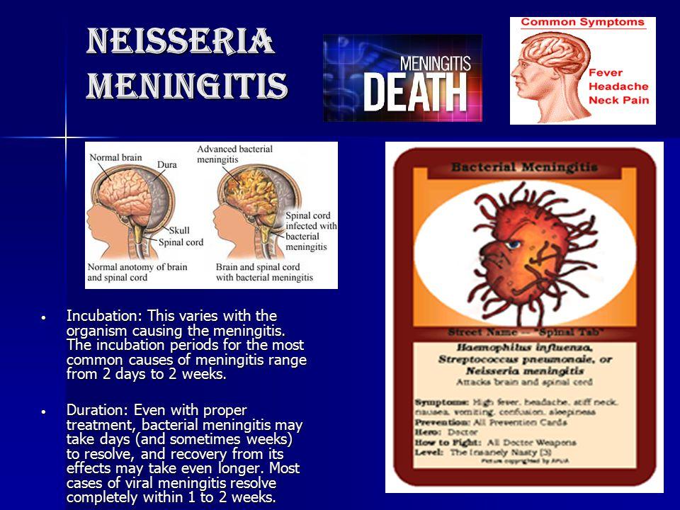 Neisseria meningitis Incubation: This varies with the organism causing the meningitis. The incubation periods for the most common causes of meningitis