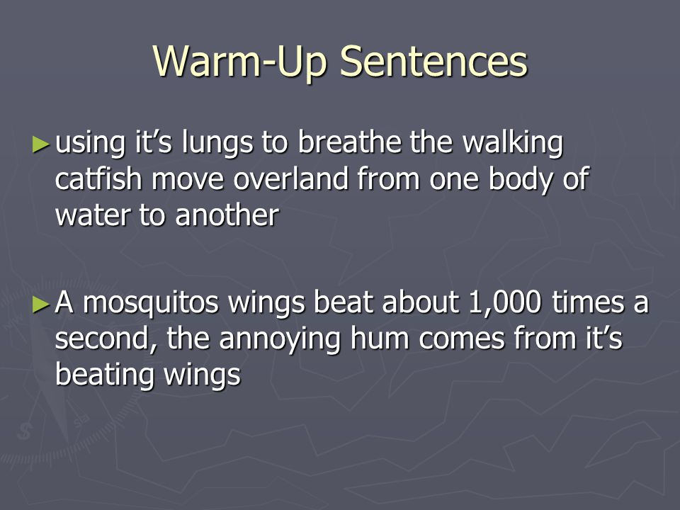 Warm-Up Sentences ► using it's lungs to breathe the walking catfish move overland from one body of water to another ► A mosquitos wings beat about 1,0