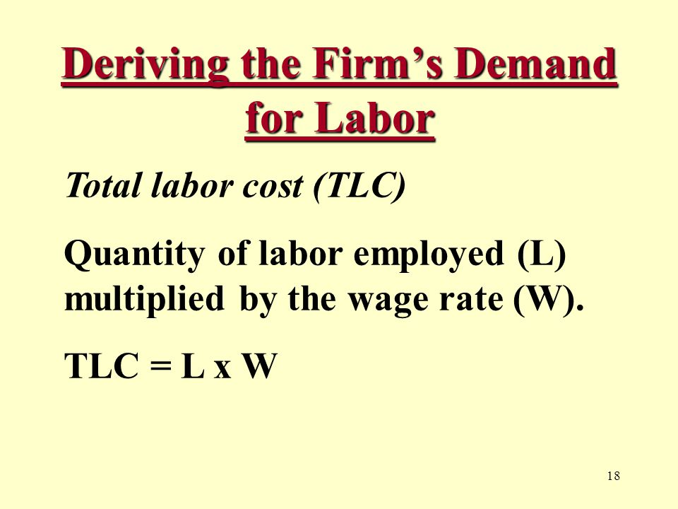 18 Deriving the Firm's Demand for Labor Total labor cost (TLC) Quantity of labor employed (L) multiplied by the wage rate (W).