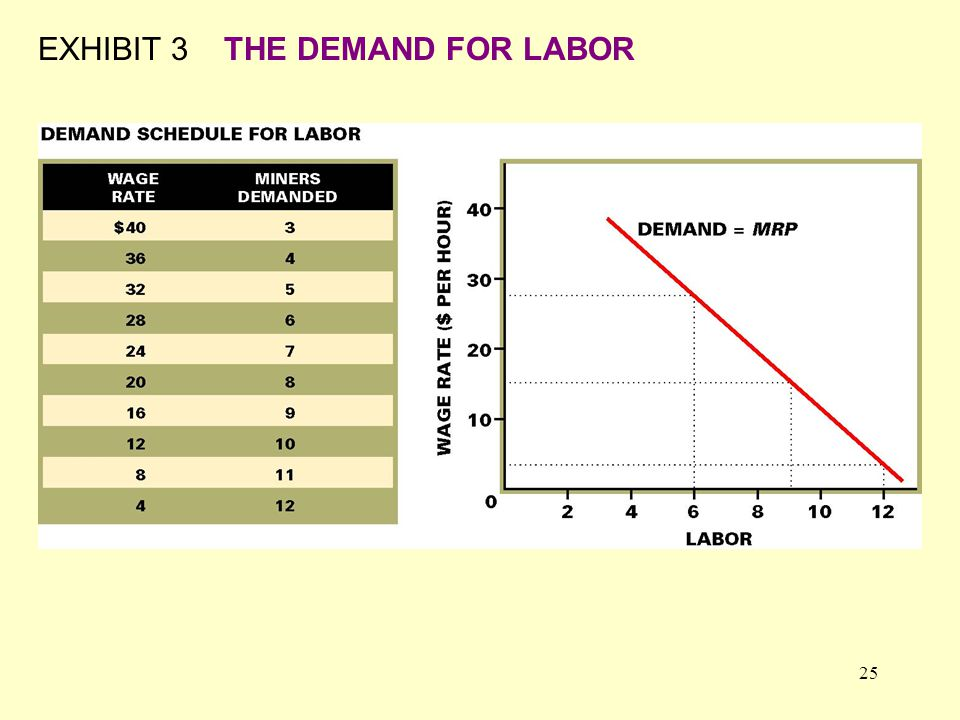 25 EXHIBIT 3THE DEMAND FOR LABOR