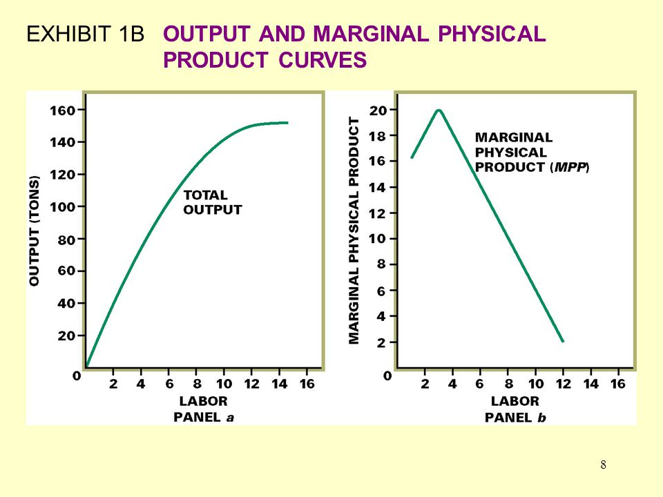 8 EXHIBIT 1BOUTPUT AND MARGINAL PHYSICAL PRODUCT CURVES