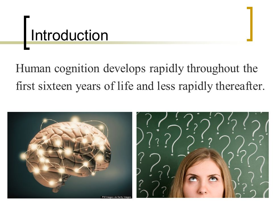 Vocabulary Affirmatively 肯定地 Paradigms 範例 Puberty 青春期 Cognitive 認知的 Domain 領域 Equilibration 平衡 Equilibrium 均衡