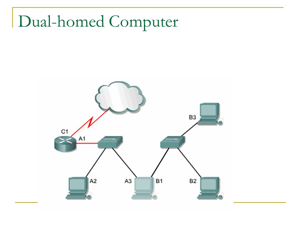Dual-homed Computer
