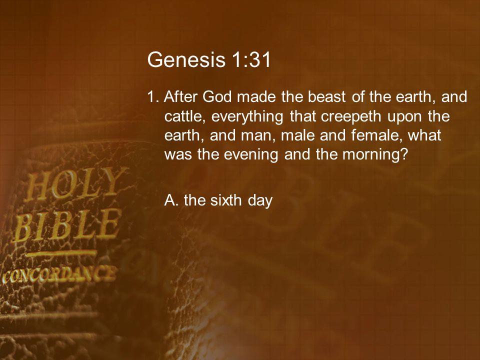 Genesis 1:31 1.