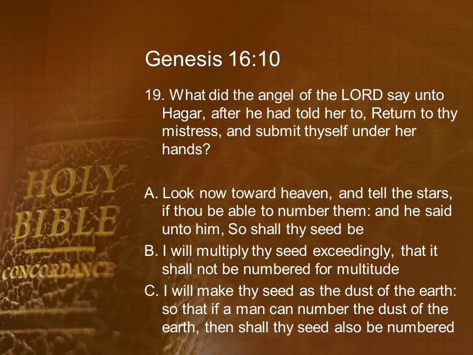 Genesis 16:10 19.