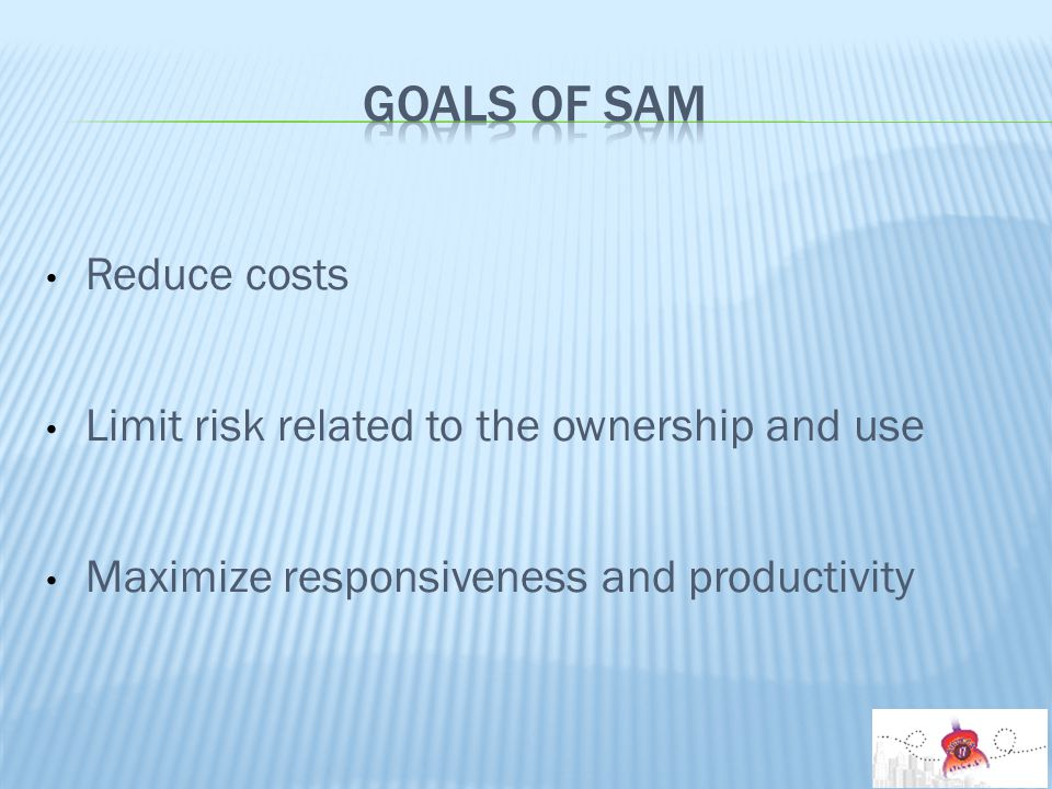 Reduce costs Limit risk related to the ownership and use Maximize responsiveness and productivity