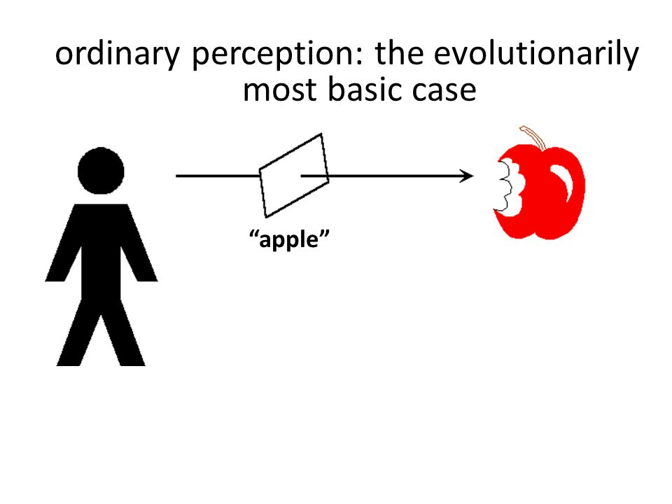"""apple"" ordinary perception: the evolutionarily most basic case"