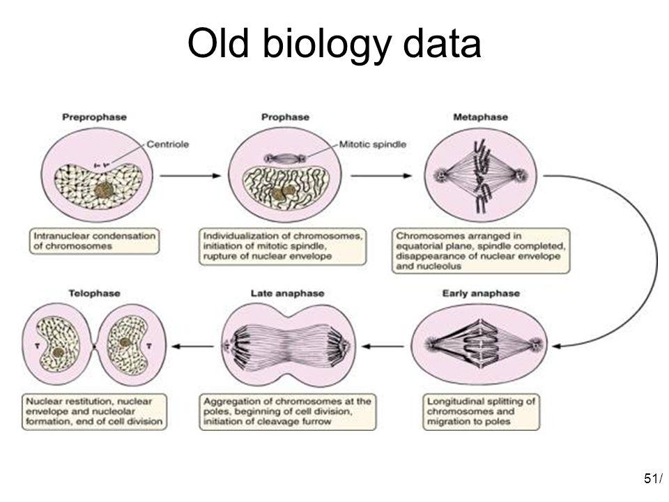 Old biology data 51/