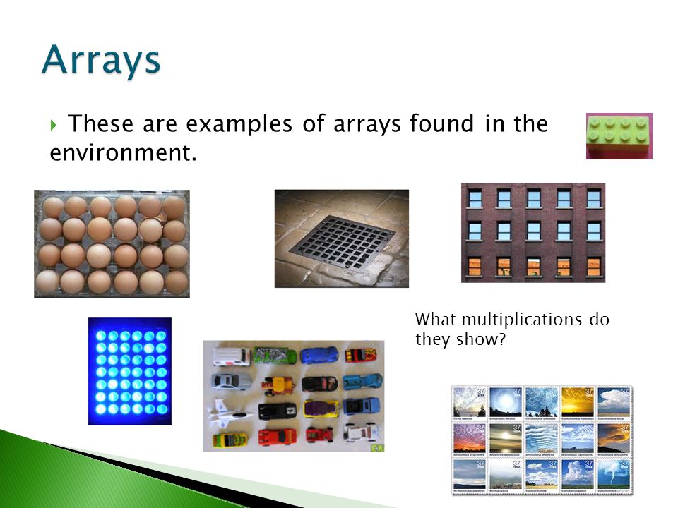  These are examples of arrays found in the environment. What multiplications do they show?