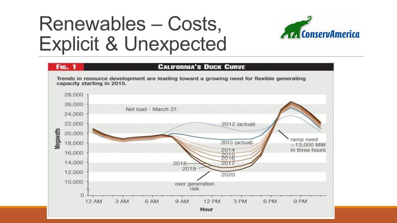 Renewables – Costs, Explicit & Unexpected