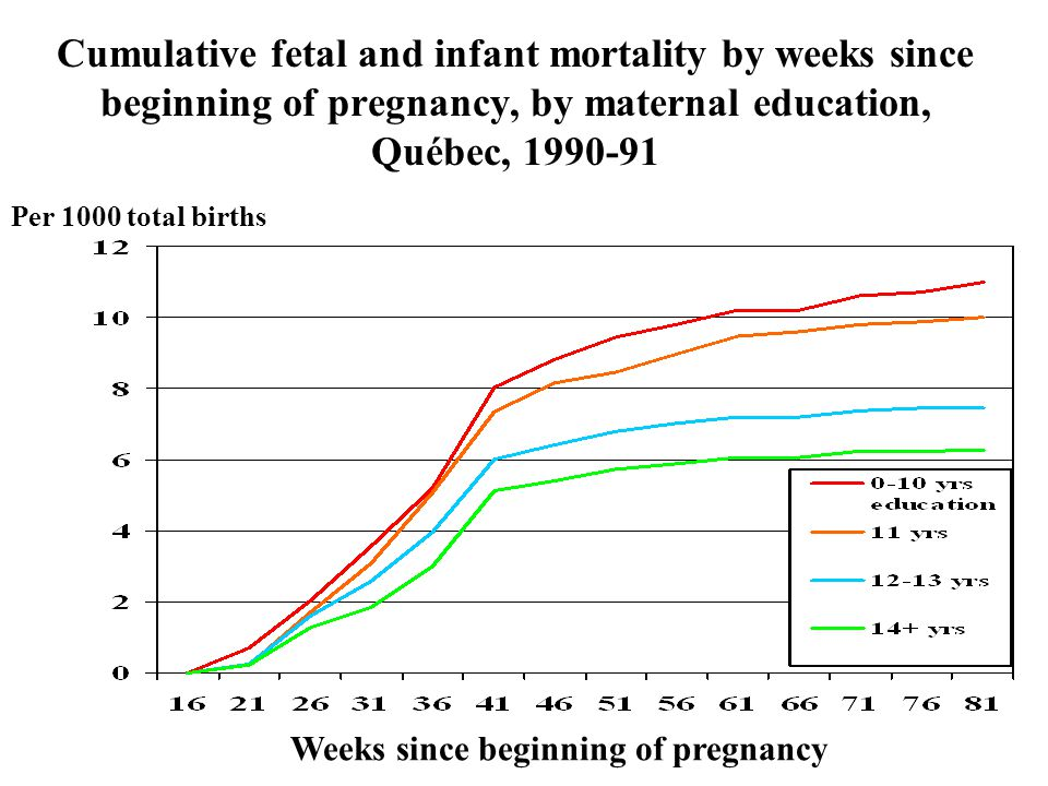 Cumulative fetal and infant mortality by weeks since beginning of pregnancy, by maternal education, Québec, 1990-91 Weeks since beginning of pregnancy Per 1000 total births