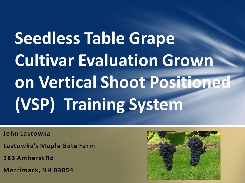 John Lastowka Lastowka's Maple Gate Farm 183 Amherst Rd Merrimack, NH 03054 Seedless Table Grape Cultivar Evaluation Grown on Vertical Shoot Positione