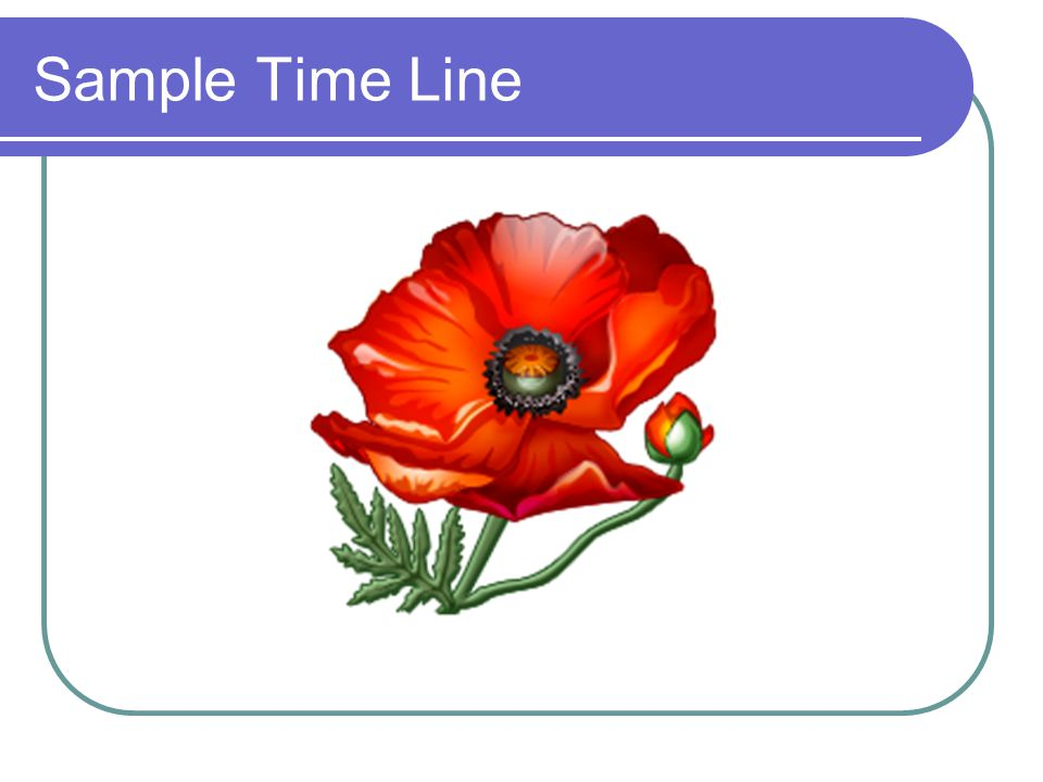 Sample Time Line