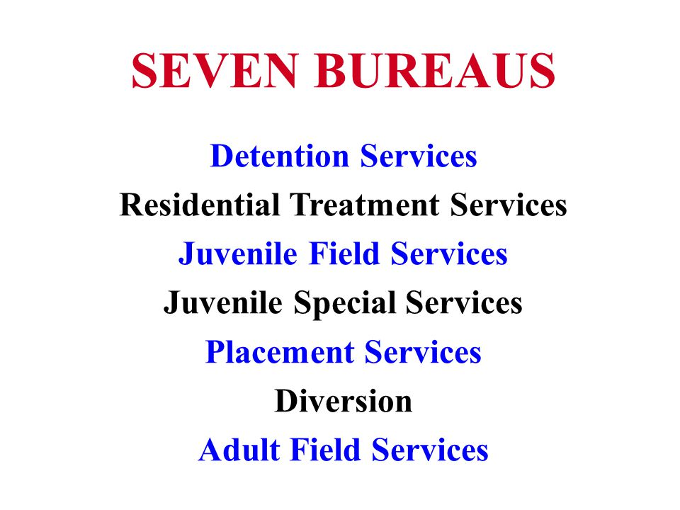 SEVEN BUREAUS Detention Services Residential Treatment Services Juvenile Field Services Juvenile Special Services Placement Services Diversion Adult Field Services