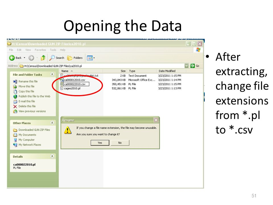 Opening the Data After extracting, change file extensions from *.pl to *.csv 51