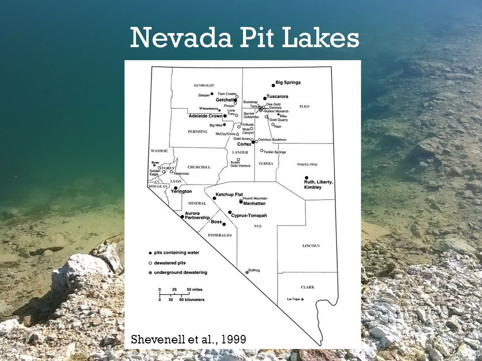 Shevenell et al., 1999 Nevada Pit Lakes