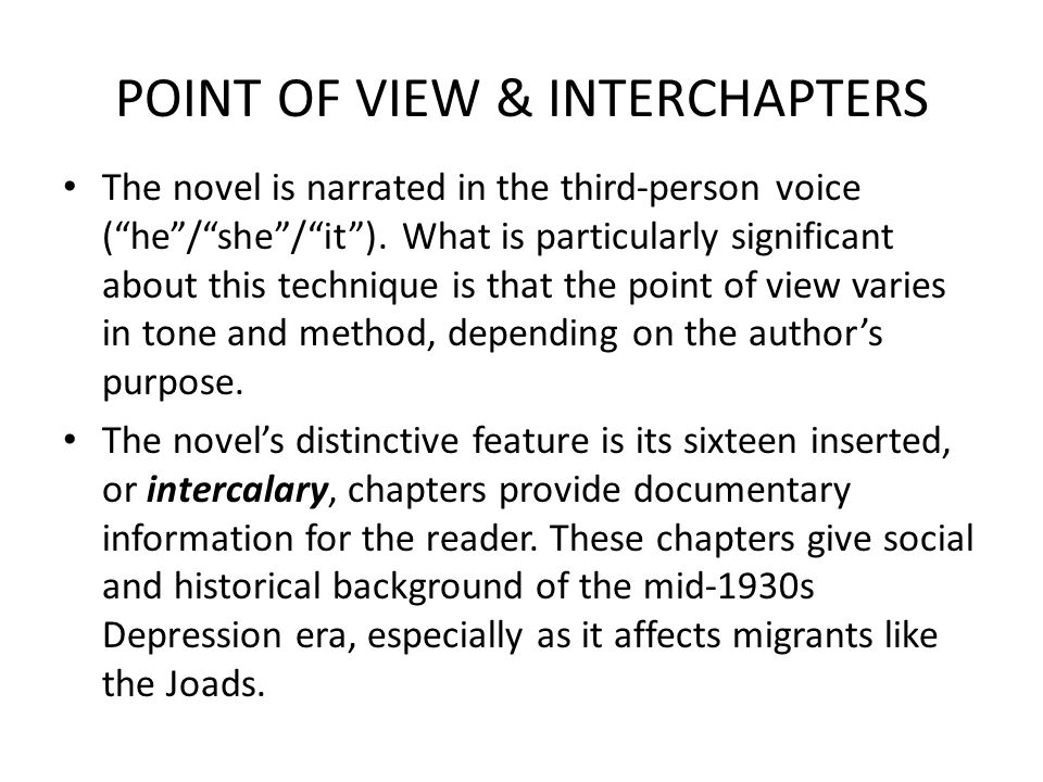 POINT OF VIEW & INTERCHAPTERS The novel is narrated in the third-person voice ( he / she / it ).