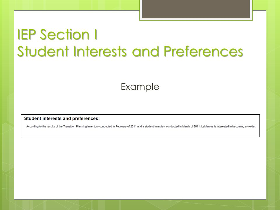 IEP Section I Student Interests and Preferences Example