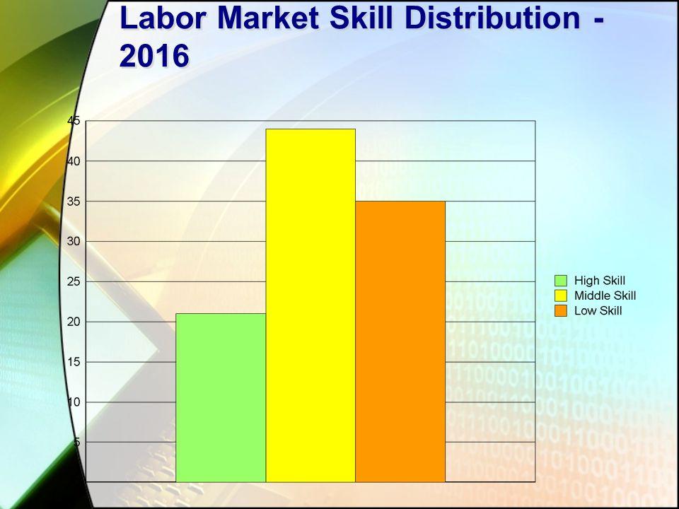 Labor Market Skill Distribution - 2016