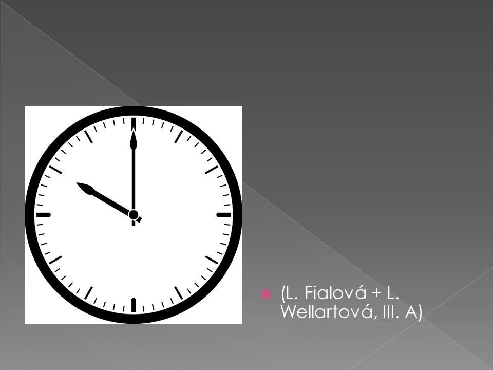  (L. Fialová + L. Wellartová, III. A)