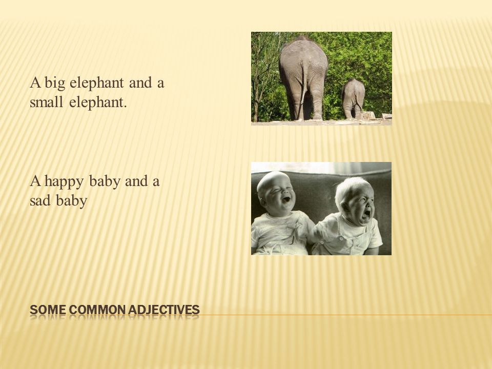 A big elephant and a small elephant. A happy baby and a sad baby