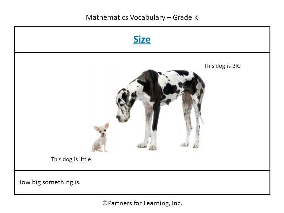 Mathematics Vocabulary – Grade K Size ©Partners for Learning, Inc. How big something is. This dog is little. This dog is BIG