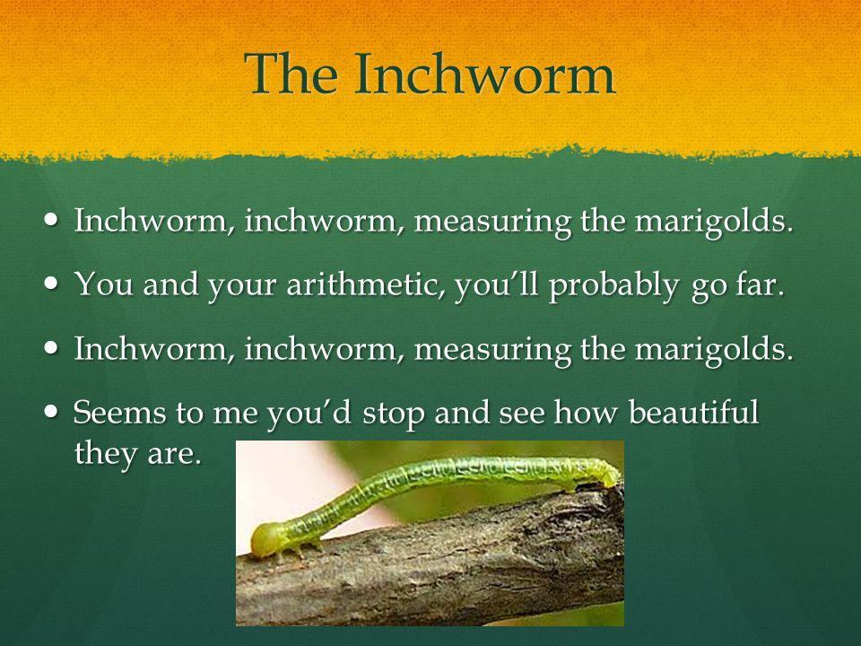Inchworm, inchworm, measuring the marigolds. Inchworm, inchworm, measuring the marigolds.
