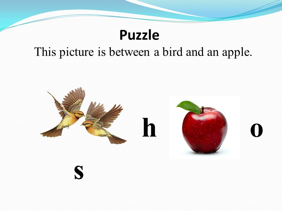 Puzzle This picture is between a bird and an apple. h o s