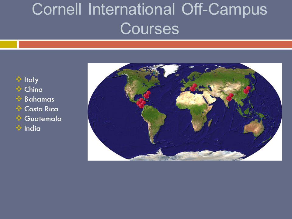 Cornell International Off-Campus Courses  Italy  China  Bahamas  Costa Rica  Guatemala  India