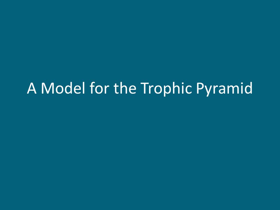 A Model for the Trophic Pyramid