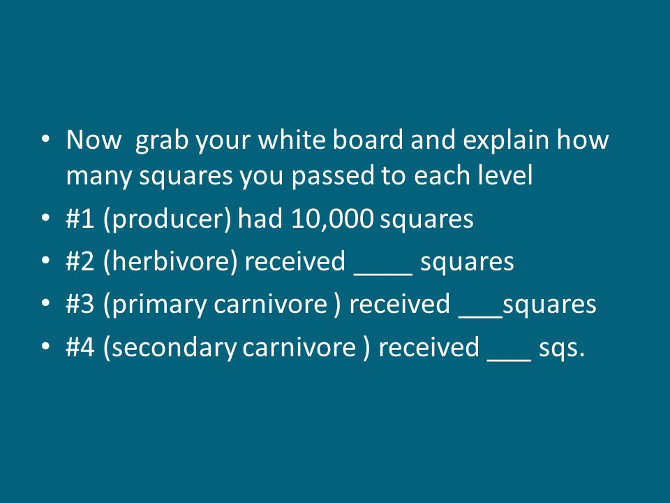 Now grab your white board and explain how many squares you passed to each level #1 (producer) had 10,000 squares #2 (herbivore) received ____ squares #3 (primary carnivore ) received ___squares #4 (secondary carnivore ) received ___ sqs.