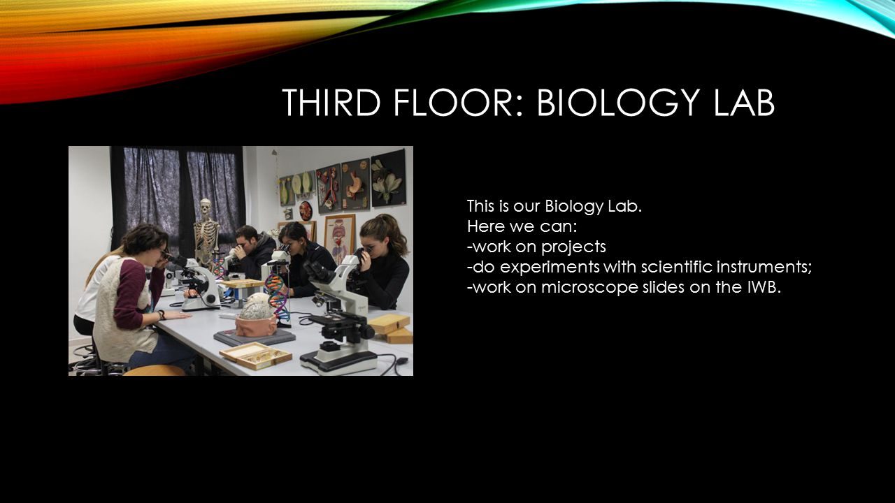 THIRD FLOOR: BIOLOGY LAB This is our Biology Lab.